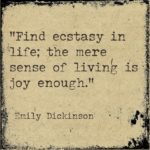 Emily Dickinson & YOU